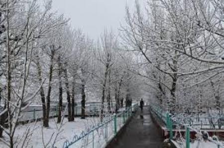 Өнөөдөр цас орно