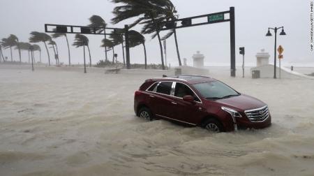 """""""Ирма"""" хар салхи Флоридаг дайрлаа"""