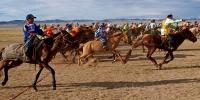 Үндэсний их баяр наадамд монгол морьдоос эрлийз морьдыг тусад нь уралдуулах журам гарлаа
