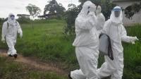 Либерид эболагийн халдвар дахин дэгдлээ