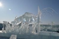 Олон улсын мөсөн барималын уралдаанд амжилттай оролцжээ