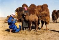 Монголын 13 дахь соёлын биет бус өвийг ЮНЕСКО-д бүртгэлээ