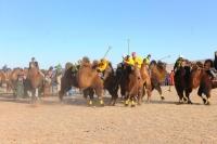 Тэмээн поло-2016 болно