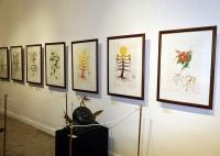 С.Дали ба П.Пикассогийн эх бүтээлийг Улаанбаатарт анх удаа дэлгэлээ