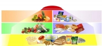 Зохистой хооллолт гэж юу вэ