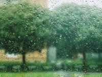 Бороотой зуны дурсамж /COVER/