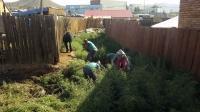 320 мянган м.кв талбайн шарилжийг цэвэрлэжээ