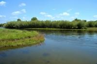 Хэрлэн голын урсацад тохируулга хийж болох эсэх ТЭЗҮ боловсруулна