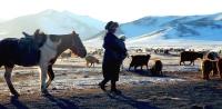 Цаг агаарын мэдээллийг 309 сумын малчид гар утсаараа хүлээн авч байна