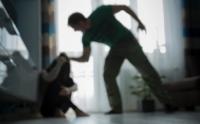 Долоон эмэгтэй баярынхаа өдөр гэр бүлийн хүчирхийлэлд өртжээ
