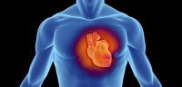 Дийлэнх эрэгтэйчүүд зүрх судасны тогтолцооны өвчний улмаас нас барж байна