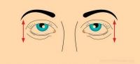 ЗӨВЛӨГӨӨ: Харааны дасгал
