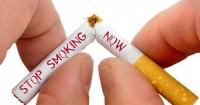 """Тамхи таны эрүүл мэндийг эдийн засагтай чинь хамт """"залгина"""""""