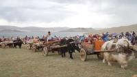 """""""Нүүдэлчин Монгол"""" наадмаар морь уралдаж, бөх барилдахгүй"""