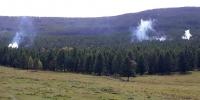 Нийслэлийн ногоон бүсэд ойн хөнөөлт хортон шавжтай тэмцэх ажил явагдаж байна