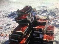 Стандартын шаардлага хангаагүй 500 кг бэрсүүт жүржийг устгажээ