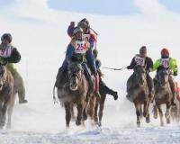 Хэнтийн аймагт хурдан морь унасан хүүхэд хоёр гараа хөлдөөжээ
