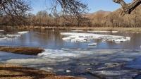 Зургаан настай хүү Ховд голд осолджээ