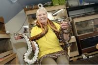 Могой цуглуулах сонирхолтой 70 настай эмээ