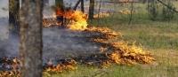 Хустайн аманд ой хээрийн түймэр гарчээ