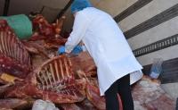 Баян-Өлгий аймгаас оруулж ирсэн 20 тн үхрийн мах өвчтэй малын мах болох нь тогтоогджээ