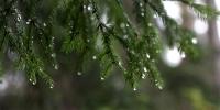 Хангай, Хөвсгөлийн уулархаг нутгаар бороо, нойтон цас орж, ихэнх нутгаар салхи шуургатай байна