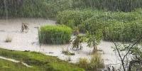 Ойрын өдрүүдэд үргэлжилсэн бороотой байх тул үер усны аюулаас сэрэмжтэй байхыг анхааруулж байна
