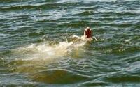 Сэрэмжлүүлэг: Амралтын өдрүүдэд таван хүн усанд осолджээ