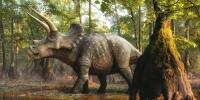 68 сая жилийн настай динозаврын яс олджээ