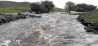 Гол мөрөн даган нутаглаж буй айлууд үер усны аюулаас болгоомжилно уу