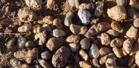 Өнгөт чулуунд шунагчид Даланжаргалан сумын хөрсийг сэндийчиж байна