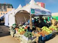 Шинэ ургацын жимс, хүнсний ногоонд нян судлал, цацрагын тандалт судалгаа хийгдэж байна