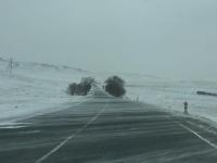 ЦУОШГ: Өнөө маргаашдаа нутгийн төв хэсгээр нойтон цас орж, цасан шуурга шуурна