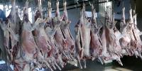 Нийслэлийн иргэдэд зориулсан махны өргөтгөсөн худалдаа анх удаа болно