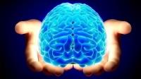 Тархины хөгжил 50 нас хүртэл үргэлжилдэг