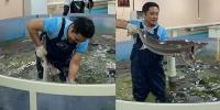 Э.Бадар-Ууган Загасны дэлгүүрт ажиллаж байна