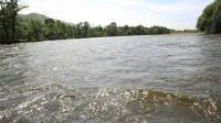 Гол мөрний усны түвшин 20-100 см даван үерлэж байна