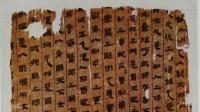 2200 жилийн настай анатомийн бичмэлийг олжээ