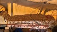 2500 гаруй жилийн настай 14 булш олжээ