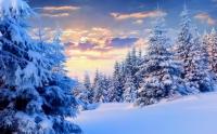 Өнөөдөр нутгийн зүүн хэсгээр цас орж, цасан шуурга шуурна