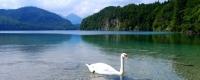 Үзэсгэлэнт байгалиар аялан алжаалаа тайлцгаая