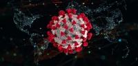Нэг шинэ голомт үүссэн, таван хүний халдварын эх уурхайг тодорхойлох ажил хийгдэж байна