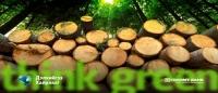 Дэлхий дээр нэг ч мод байхгүй бол юу болох вэ?