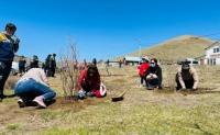 ''Гүнжийн булаг'' цэцэрлэгт хүрээлэн байгуулах төсөлд ''Тавантолгой түлш'' ХХК хувь нэмрээ орууллаа