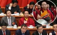 ''Нэг бүс, нэг зам''-ын уулзалт дээр Банчин богдын Монголд хийх айлчлалыг ярьжээ