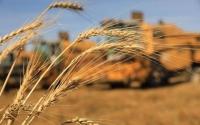Оюутан, сонсогч, цэргийн алба хаагч, ажил хайж буй иргэдийг ургац хураалтад ажиллуулна