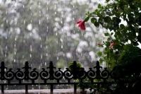 Өнөөдөр нутгийн зүүн хагаст усархаг бороо, дуу цахилгаантай аадар бороо орно