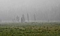 Өнөөдөр Булган, Сэлэнгийн нутаг, Архангайн зүүн, Төв аймгийн баруун хэсгээр ахиухан хэмжээний бороо орно